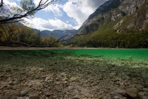kopvoorn in thermoklien savica rivier