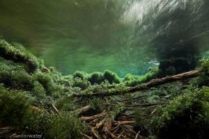helder water, onderwaterfotografie, zuurstof, Alme, Almequelle